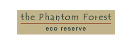 Phantom Forest Eco Reserve